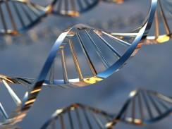 Загадочные генетическая и психологическая экспертизы