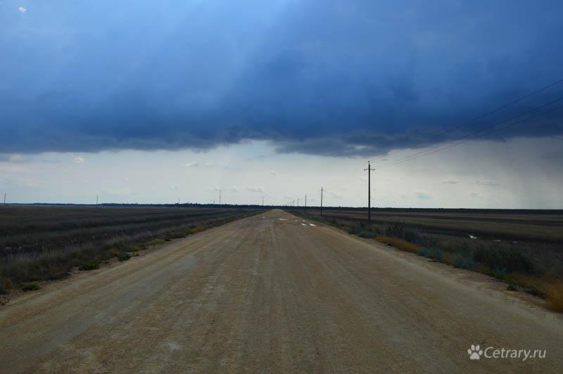 Дорога на Бакальскую косу