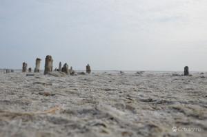 Западный берег Сиваша