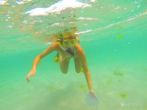 Не желаете ли сфотографироваться с медузой?
